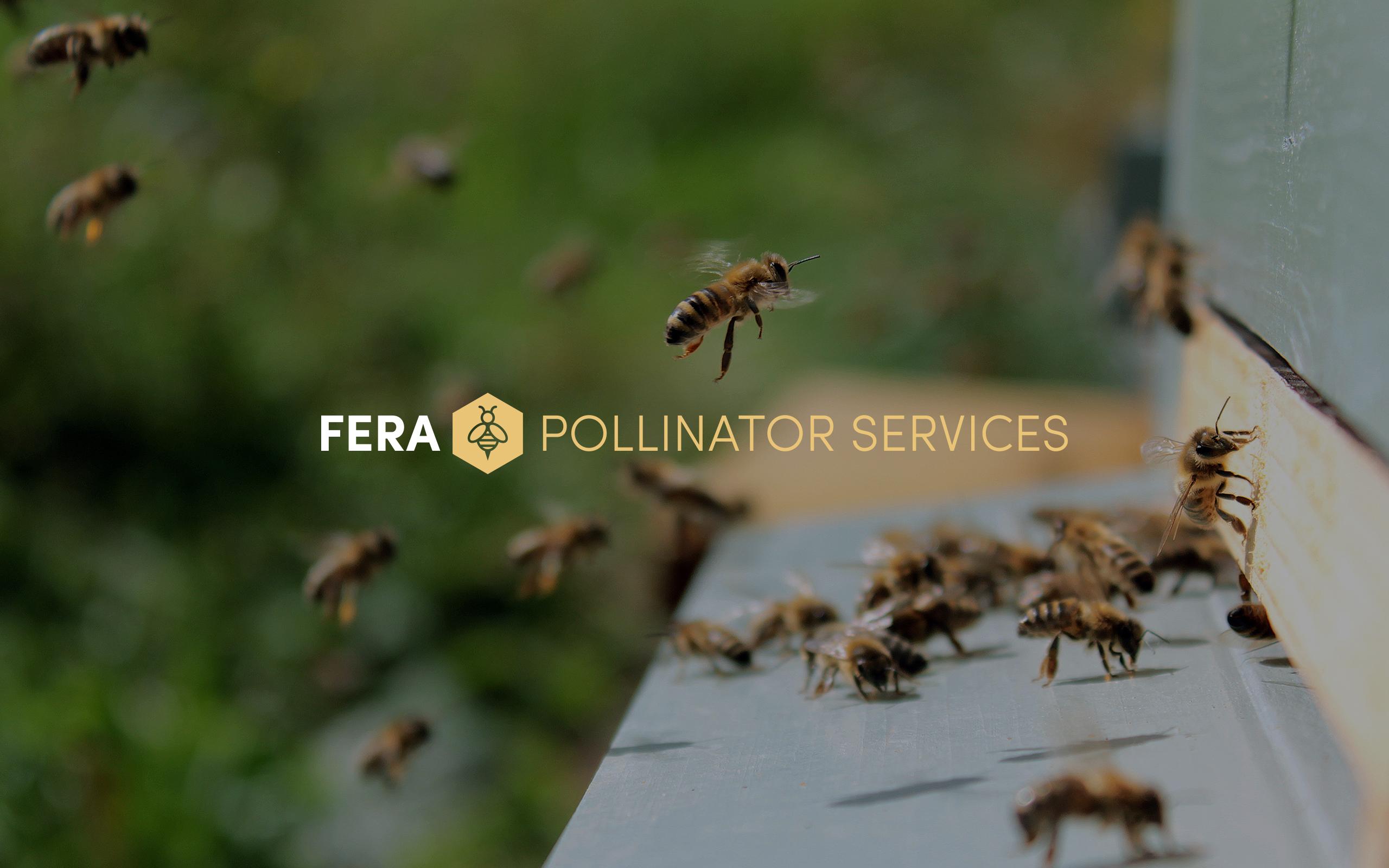 Fera pollinator logo